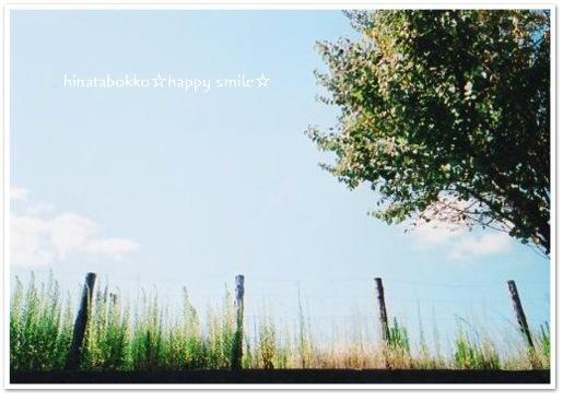 natura200909Autumn Sky.jpg